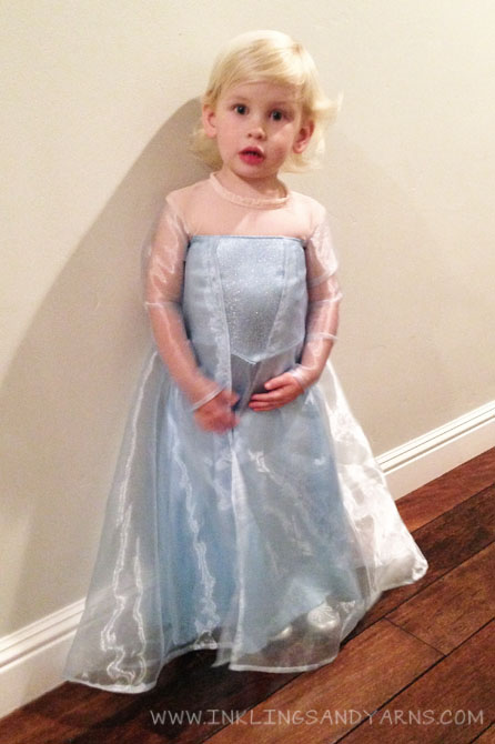 Home Made Elsa Dress